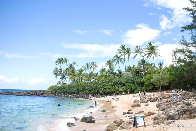 Laniakea Beach on Oahu, Hawaii. | qandvictoria.wordpress.com